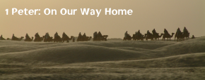 1 Peter: On Our Way Home (Real Food talks Autumn 2012 & new year 2013 sermons)
