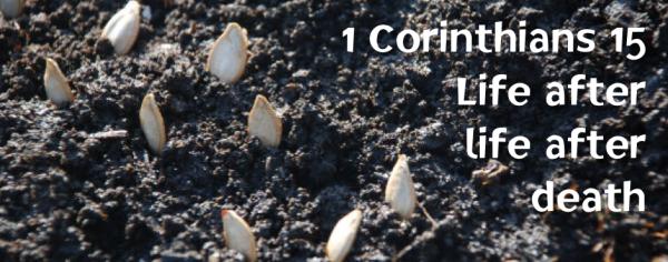 1 Corinthians 15: Life after life after death