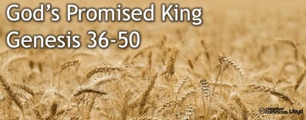 Genesis 36-50 God's Promised King