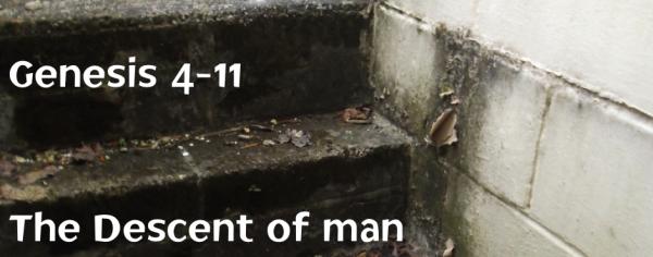 Genesis 4-11 The Descent of Man